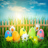 Blue Sky Wood Fence Pearl Eggs Photo Backdrop for Easter