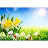 Easter Eggs and Yellow Flowers Background Green Grass Under Sunshine Photography Backdrop