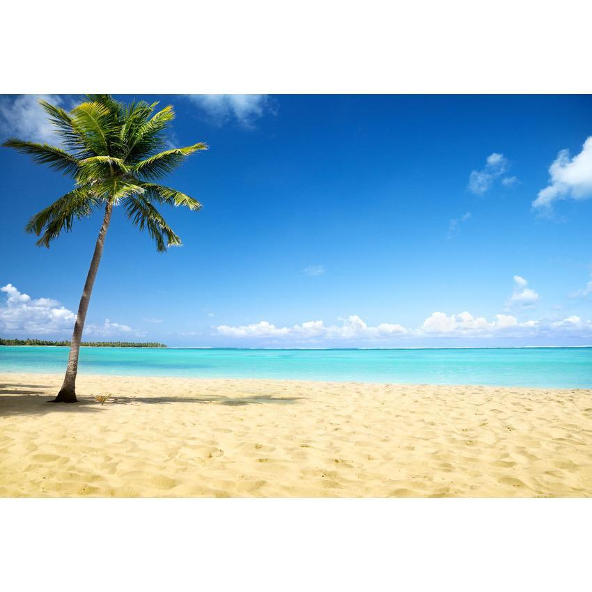 Golden Sandy Beach With Blue Sea For Summer Holiday Photography Backdrop