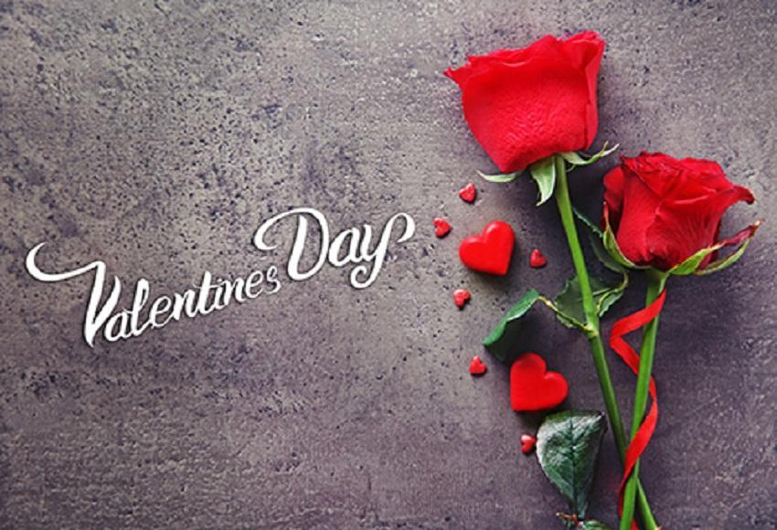 Red Flower Photography Background For Celebrate Happy Valentine's Day