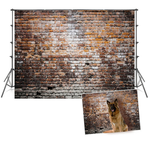Vintage Brick Wall Backdrops Retro Background for Photography Prop