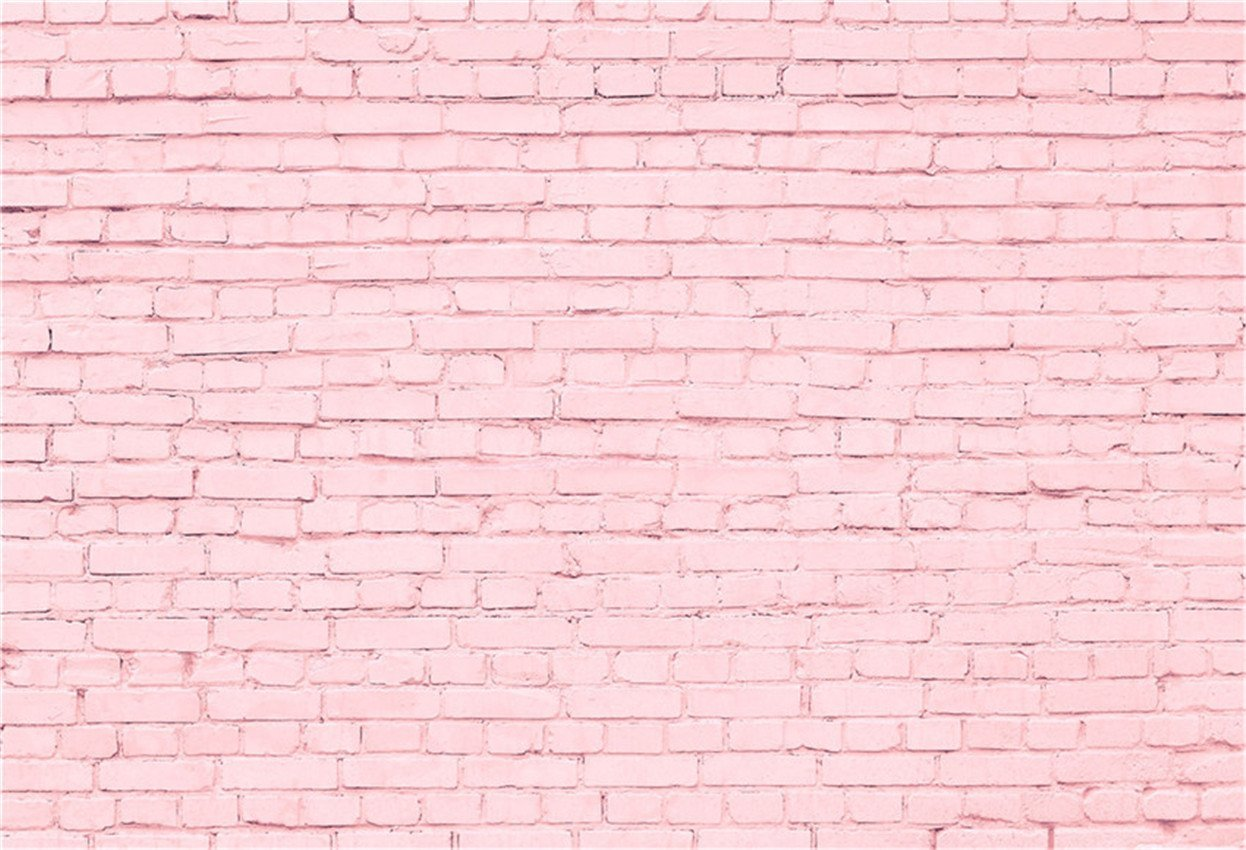 Sweet Pink Brick Wall Backdrop for Princess Photography