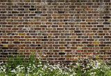 Vintage Brick Wall White Flowers Spring Backdrops for Photography
