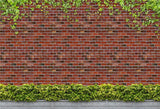Brick Wall Creeper Green Leaves Backdrops for Photo Studio