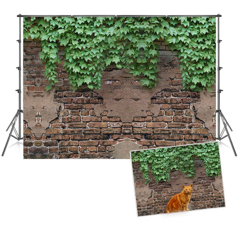 Old Brick Wall with Creeper Photography Backdrops