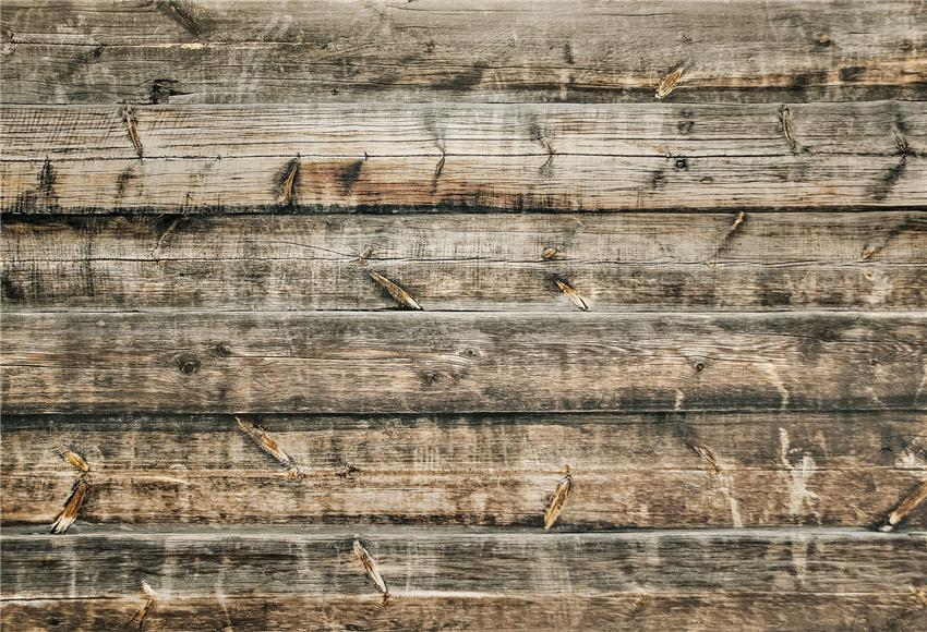 Retro Wood Texture Wood Backdrop