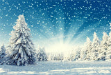 Winter Snow Forest Pine Backdrops for Christmas