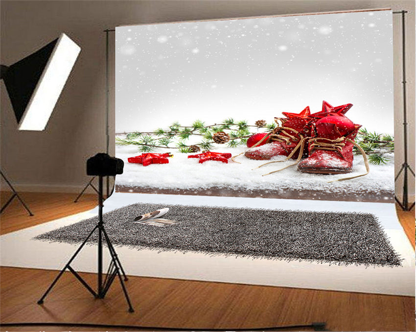 Snowflake Winter Backdrops for Christmas