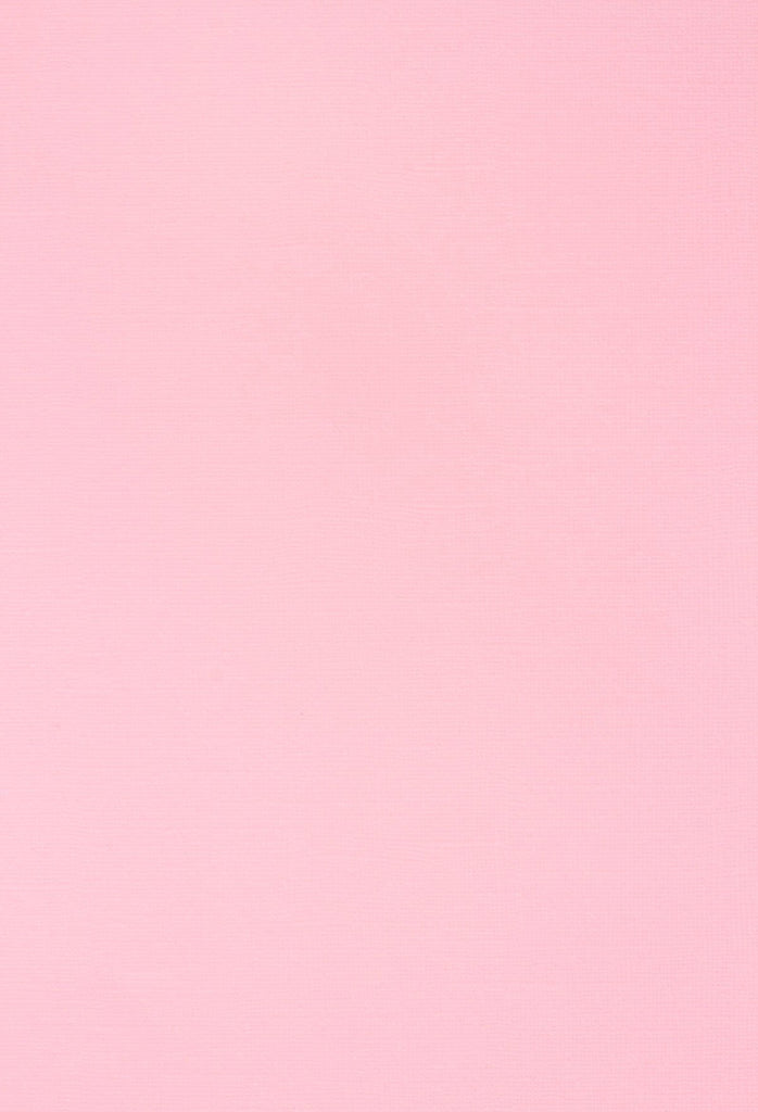 Pink Solid Color Photo Studio Backdrop for Party Portrait