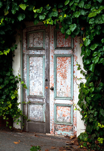 Spring Leaves Wood Door Vintage Architecture Photography Backdrops