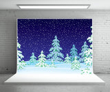 Cartoon Style Winter Photography Backdrop Snow Background