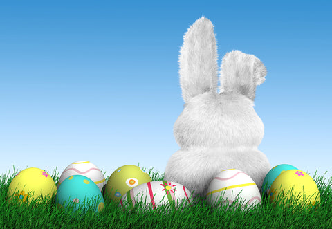 Easter Spring Grass Eggs Rabbit Backdrop