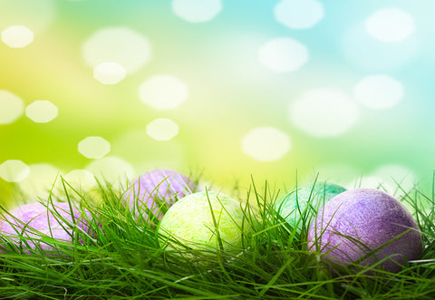 Bokeh Polka Spring Easter Backdrops for Picture
