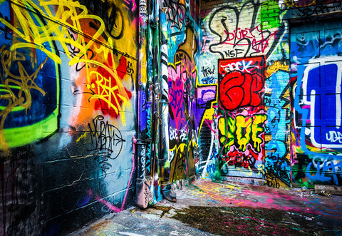 Graffiti Vintage Street Photo Backdrop for Picture