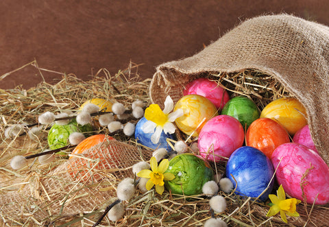 Brown Easter Straw Colorful Eggs Backdrops