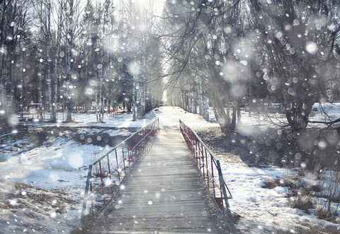 Snowing River Photography Backdrop Winter Background
