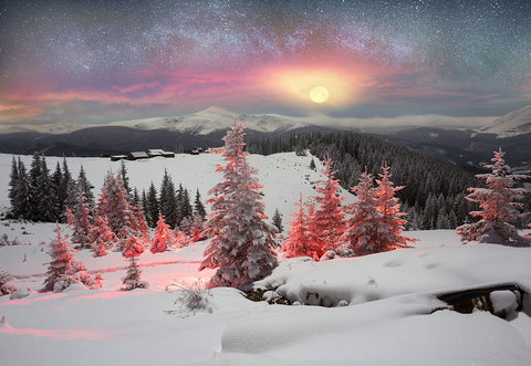 Snow Forest Sunset Winter Photography Backdrop