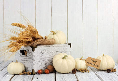 White Pumpkin Thanksgiving Day Wood Photo Backdrops