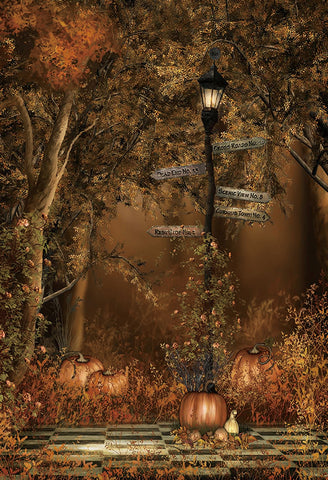 Fall Forest Pumpkin Photo Studio Backdrops