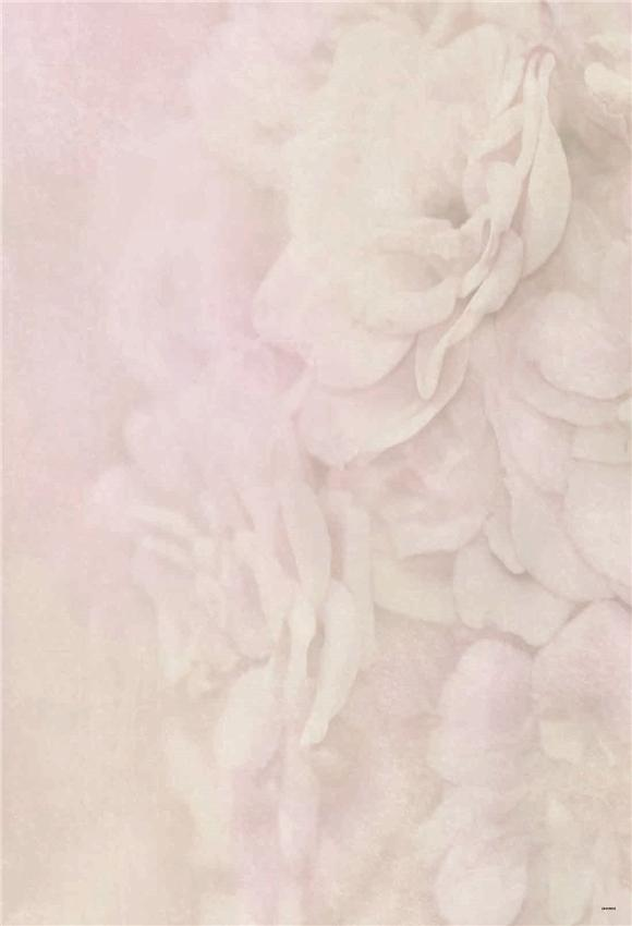 Pink Flowers Wedding Backdrops for Photo
