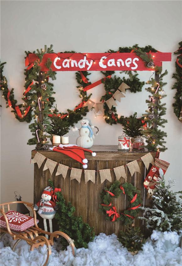 Candy Canes Christmas Photo Backdrop