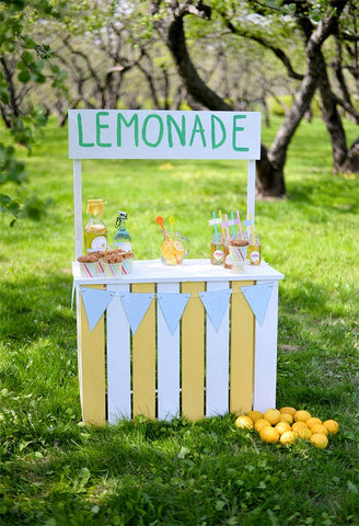 Lemonade Spring Photography Backdrops for Photos