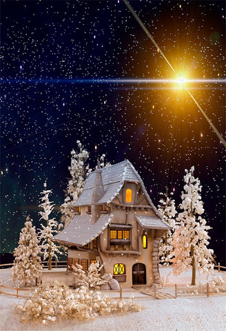 Night of Wonderland House Snow Flake Backdrops for Studio