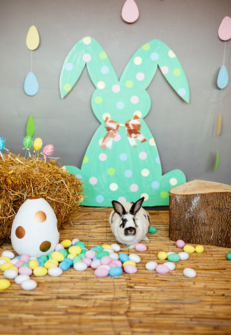 Polka Mint Rabbit Colorful Eggs Happy Easter Straw Backdrops