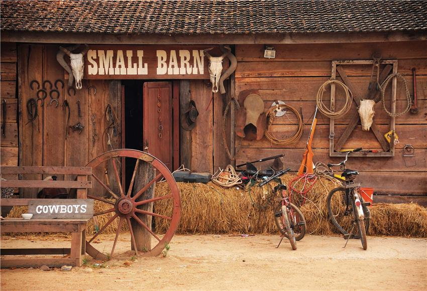 Small Barn Straw Wooden Photo Backdrop for Studio