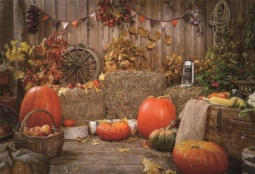 Rustic Wooden Fall Straw Backdrops