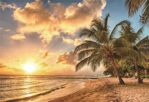 Sunset Beach Tropical Backdrop