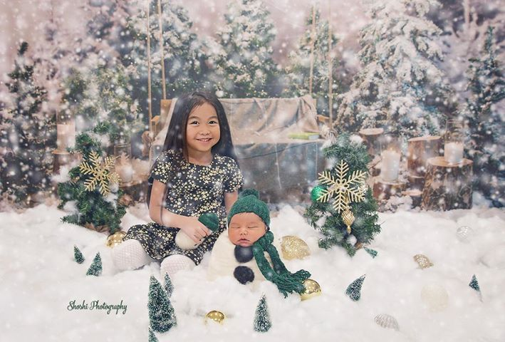 Glitter Snowflake Christmas Tree Backdrop for Studio