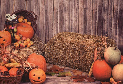 Trick or Treat Halloween Haystack Wood Wall Backdrop