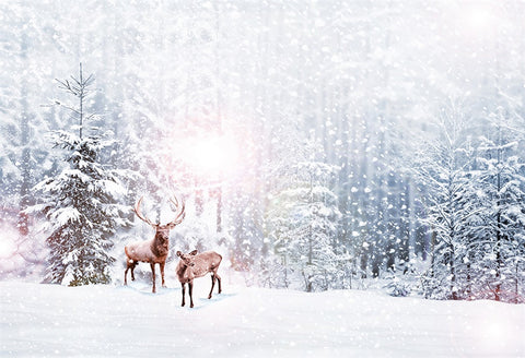 Snow Forest Elk Photography Backdrops for Picture