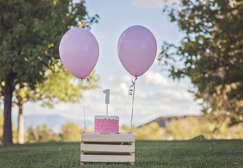 1st Pink Birthday Baby Show Outdoor Backdrops