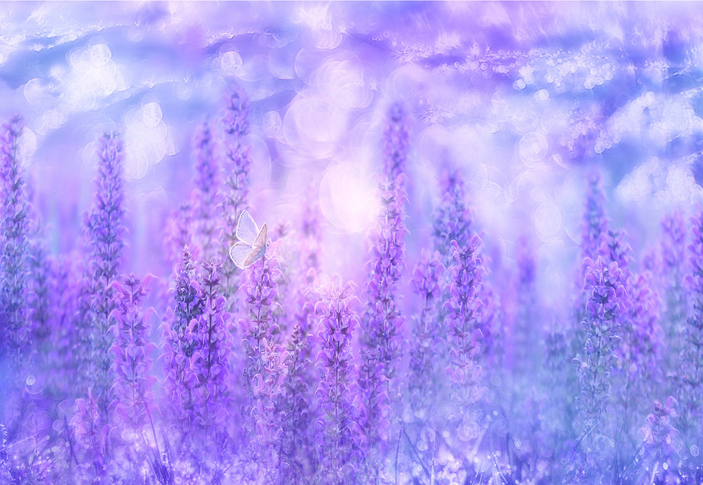 Lavender Floral Butterfly Photo Booth Backdrops