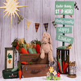 Happy Easter Cartoon Decoration Photography Backdrops for Mini Session