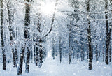 Winter Shiny Snow Christmas Backdrops