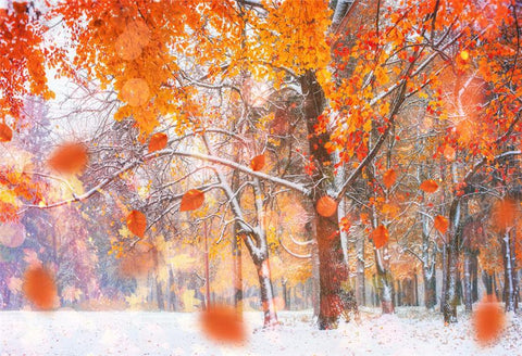 Winter Maple Leaves Snow Backdrop for Picture
