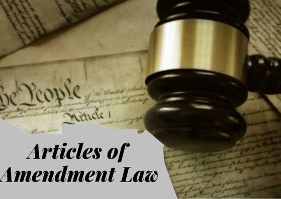 The Articles of Amendment Law