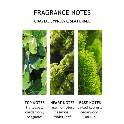 Molton Brown Coastal Cypress & Sea Fennel Hand Wash