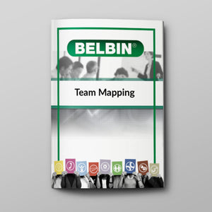 Belbin Team Map