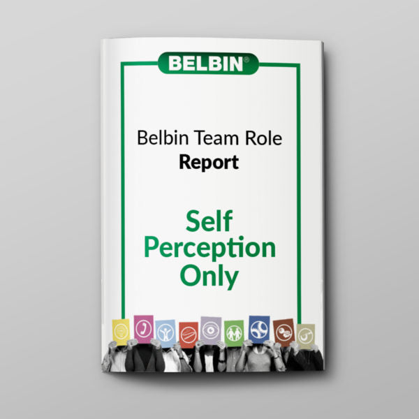 Individual Belbin Report – Self-Perception Only (DIY)