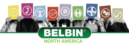 Belbin Extended Team Report Package