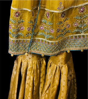 CANOLA GRACE- EMBROIDERED FLARED OUTFIT WITH GHARARA PANTS- SIZE MEDIUM