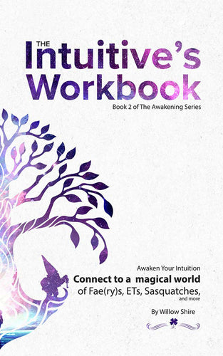 The Intuitive's Workbook : Awaken Your Intuition