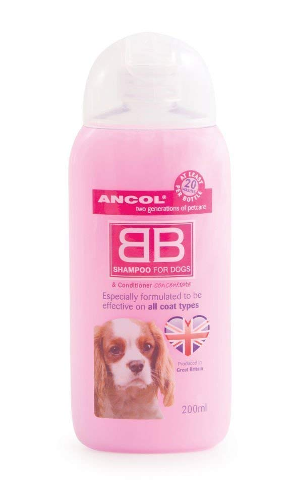 Ancol Shampoo For Dogs