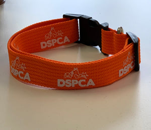 DSPCA COLLAR & LEAD SET