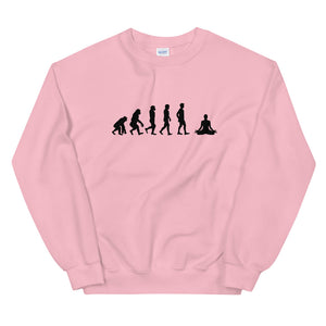 EVOLUTION MEDIATION Sweatshirt