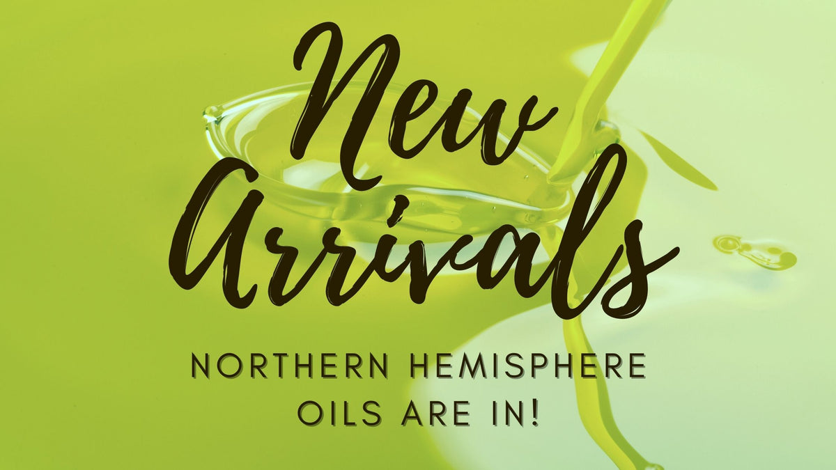 northern hemisphere olive oil